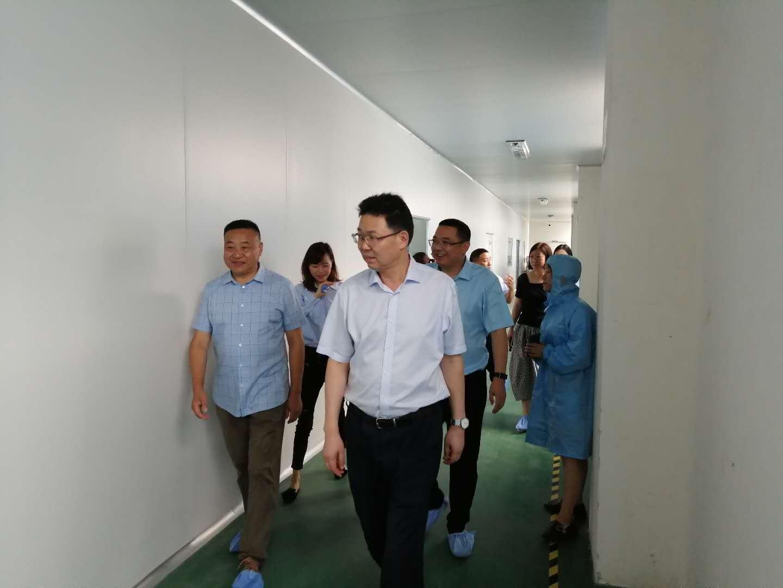 热烈欢迎安庆市领导莅临迈德普斯参观指导工作